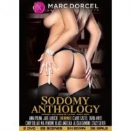 DVD Sodomy Anthology
